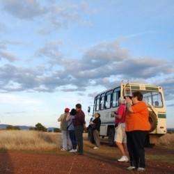 CABAÑEROS (Parque Nacional) Nueva visita guiada 4x4 para Grupos Organizados